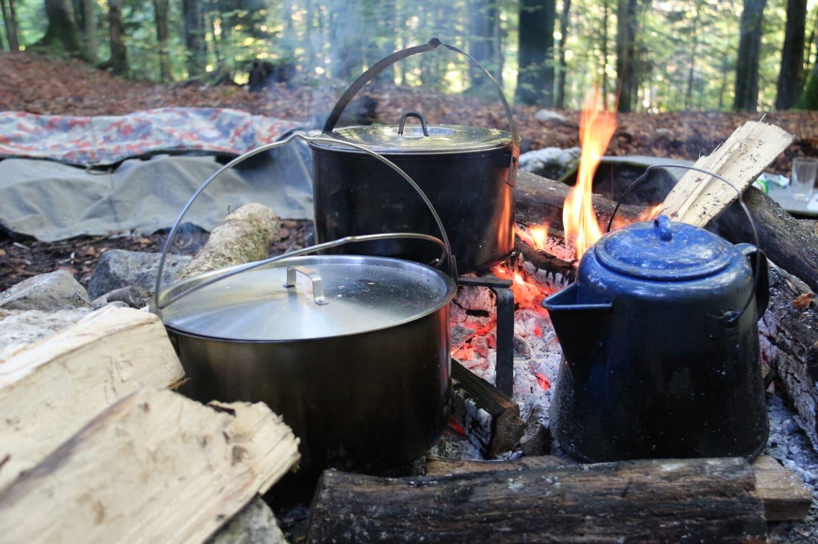 Auf dem Feuer kochen, in der Natur leben. Grosse Vielfalt an Kursen in und um das Thema Nautr